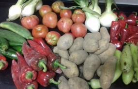ep archivo - verduras de huerta