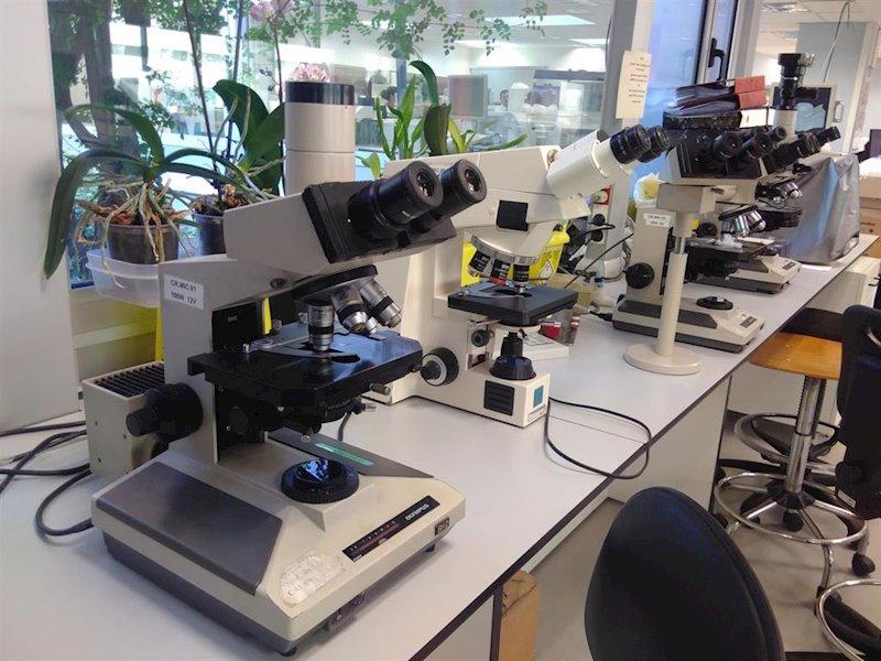ep laboratori de lhospital vall dhebron de barcelona