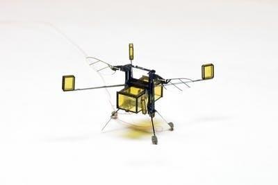 Desarrollan un dron-abeja que puede volar, sumergirse en el agua y propulsarse fuera de ella