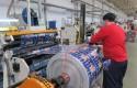 ep la exportacionmaterias plasticassus manufacturaslamas crecio