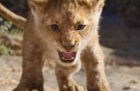 rey leon portada disney simba