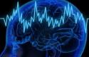 cb cerebro trading